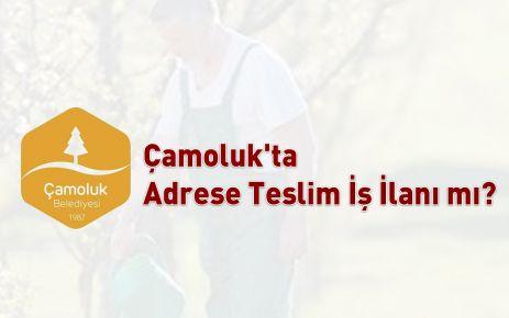 Çamoluk'ta Adrese Teslim İş İlanı mı?