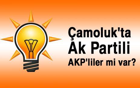 """Çamoluk'ta Ak Partili """"AKP'liler"""" mi var?"""