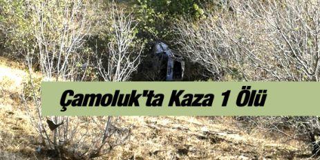 Çamoluk'ta Kaza 1 Ölü