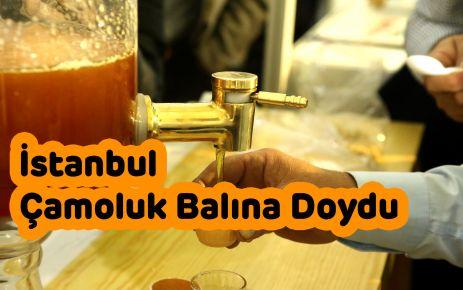 İstanbul Çamoluk Balına Doydu