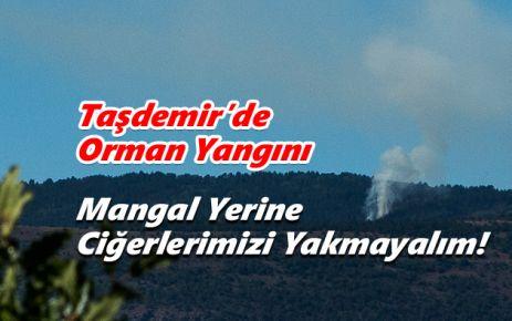 Taşdemir Köyünde Orman Yangını