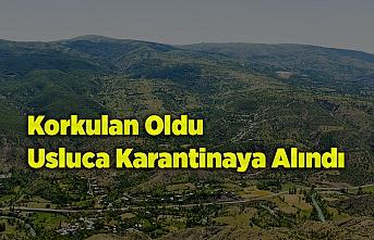 Korkulan Oldu Usluca Karantinaya Alındı