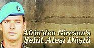 Afrin'den Giresun'a Şehit Ateşi Düştü