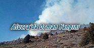 Alucra'da Orman Yangını