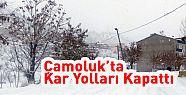 Çamoluk'ta Kar Yolları Kapattı