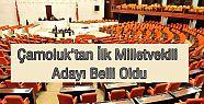 Çamoluk'tan İlk Milletvekili Adayı Belli...