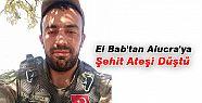 El Bab'tan Alucra'ya Şehit Ateşi Düştü
