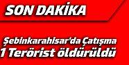 Şebinkarahisar'da çatışma 1 Terörist...