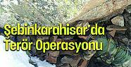 Şebinkarahisar'da terör operasyonu