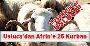 Usluca'dan Afrin'e 25 Kurban