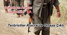 Teröristler Alucra'da Araç Gaspetti