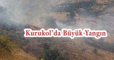 Kurukol'da Büyük Yangın