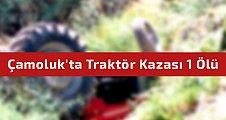 Çamoluk'ta Traktör Kazası 1 Ölü