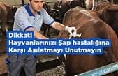 Dikkat! Hayvanlarınızı Şap hastalığı İçin Aşılatmayı Unutmayın