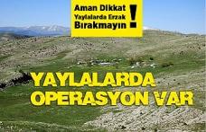 Yaylalara Erzak Operasyonu