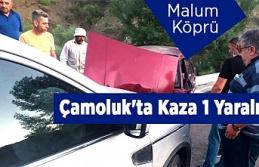 Çamoluk'ta Kaza 1 Yaralı