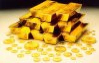 Altınlar Çamoluk'a