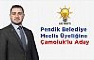 Pendik Beledye Meclis Üyeliğine Çamoluk'lu Aday