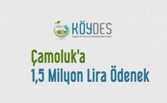 Çamoluk'a 1,5 Milyon Lira Ödenek