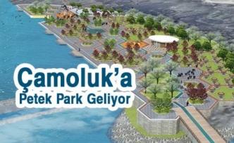 Çamoluk'a Petek park