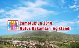 İşte Çamoluk'un 2018 Nüfusu