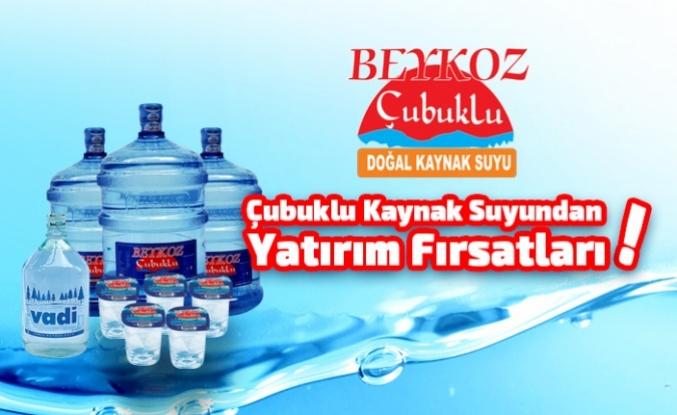 Çubuklu Kaynak Suyundan Yatırım Fırsatları