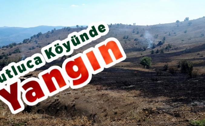 Kutluca köyünde Yangın