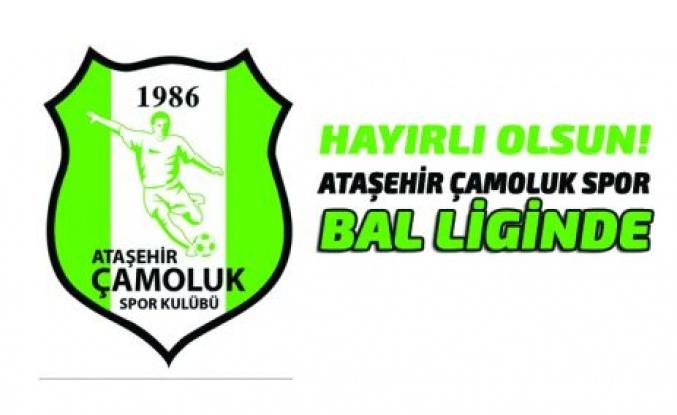 Ataşehir Çamoluk Spor Bal Liginde