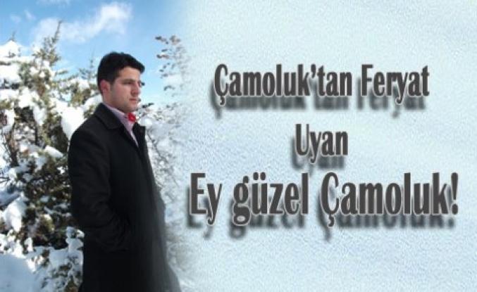 Çamoluk'tan Feryad