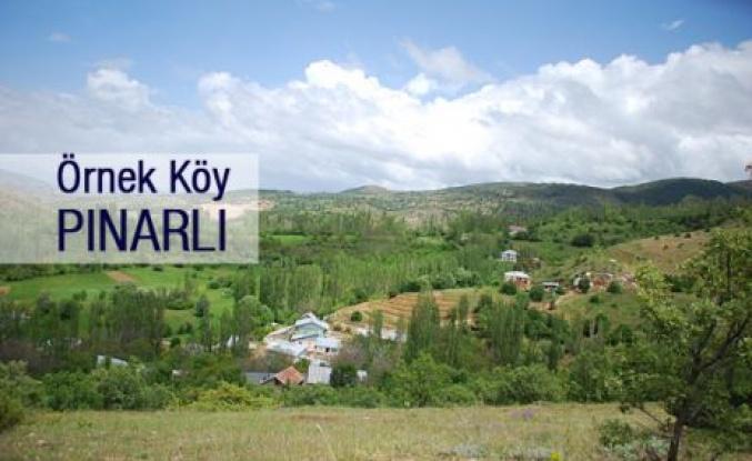 Örnek Köy Pınarlı