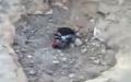 Beşar Esed'in  Askerleri Suriyeli Genci diri diri gömdüler +18