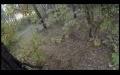Ormanda Bisikletli adamı kovalayan ayı