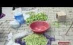 Çamoluk'tan Organik Ürünler